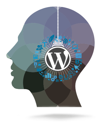 sites wordpress curitiba
